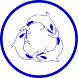 Vector killer whale icon. Blue and white. Simply change Stock Image