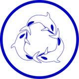 Vector killer whale icon Stock Image
