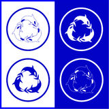Vector killer whale icons. Blue and white. Simply change Royalty Free Stock Images