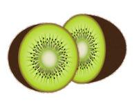 Vector kiwi fruit Stock Photos