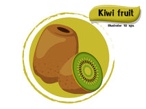 Vector Kiwi fruit isolated on color background,illustrator 10 eps. Kiwi fruit isolated on color background,illustrator 10 eps Stock Image