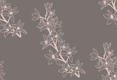 Vector Kleurrijk Naadloos Patroon met Getrokken Bloemen Stock Afbeelding