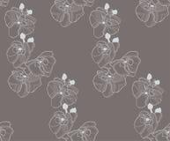 Vector Kleurrijk Naadloos Patroon met Getrokken Bloemen Stock Foto