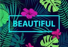 Vector kleurrijk tropisch citaat in vierkant kader romantische affiche, banner, dekking Tropische drukslogan Voor t-shirt of Royalty-vrije Stock Fotografie