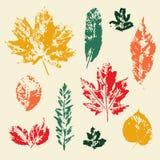 Vector kleurrijke geplaatste bladerendrukken Stock Afbeeldingen