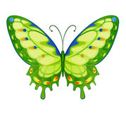 Vector kleurrijke heldere vlinders Royalty-vrije Stock Afbeeldingen