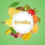 Vector kleurrijke illustratie van vruchten embleem Royalty-vrije Stock Foto