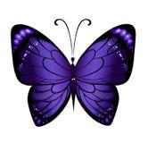 Vector kleurrijke vlinder Stock Foto's