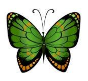 Vector kleurrijke vlinder Stock Afbeeldingen