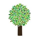 Vector l'albero Immagini Stock Libere da Diritti