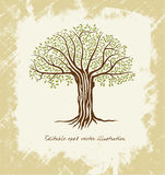 Vector l'albero Fotografie Stock