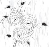 Vector l'elemento di disegno di flourish Fotografia Stock