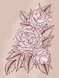 Vector l'illustrazione con il contorno dei fiori su fondo strutturato Immagine Stock