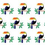 Vector l'illustrazione con le foglie ed il tucano tropicali dell'uccello su un ramo Uccello esotico isolato su fondo bianco Insie illustrazione vettoriale