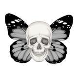 Vector l'illustrazione con un cranio umano e le ali di una farfalla royalty illustrazione gratis