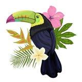 Vector l'illustrazione con un tucano ed i fiori esotici tropicali illustrazione di stock