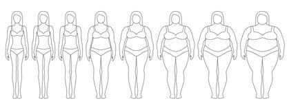 Vector l'illustrazione dei contorni della donna con peso diverso da anoressia ad estremamente obeso illustrazione vettoriale