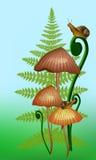 Vector l'illustrazione dei mashrooms, di una felce e delle lumache royalty illustrazione gratis