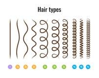 Vector l'illustrazione dei tipi grafico dei capelli che visualizza tutti i tipi ed avuto identificato fotografie stock libere da diritti