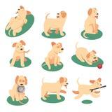Vector l'illustrazione del cane sveglio che gioca con i vari oggetti illustrazione vettoriale