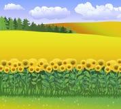 Vector l'illustrazione della natura con erba, il campo dei girasoli ed il cielo blu con le nuvole Giorno di ambienti di mondo illustrazione vettoriale