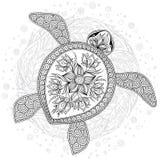 Modello per il libro da colorare tartaruga grafica - Pagine di colorazione tartaruga ...