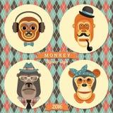 Vector l'illustrazione delle scimmie, un simbolo di 2016 Immagine Stock Libera da Diritti