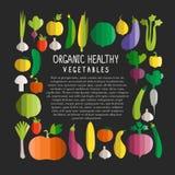 Vector l'illustrazione delle verdure nei wi piani moderni di stile di progettazione Immagini Stock