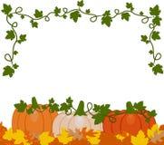 Vector l'illustrazione di un fondo delle zucche arancio e bianche royalty illustrazione gratis