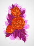 Vector l'illustrazione disegnata a mano con i fiori sul fondo strutturato dell'acquerello Immagini Stock