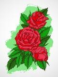 Vector l'illustrazione disegnata a mano con i fiori sul fondo strutturato dell'acquerello Immagine Stock