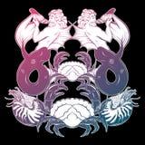 Vector l'illustrazione disegnata a mano di tritone, il nautilus del mollusco, granchio illustrazione vettoriale