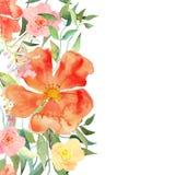 Vector l'illustrazione floreale Fotografia Stock Libera da Diritti