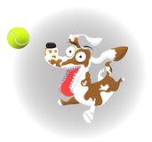 Vector l'illustrazione, il cane divertente e la pallina da tennis, su un fondo bianco Fotografia Stock Libera da Diritti