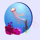 Vector l'illustrazione ovale con una medusa ed i coralli royalty illustrazione gratis