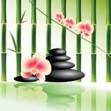 Vector l'immagine per il salone della stazione termale con l'orchidea e le pietre Fotografia Stock
