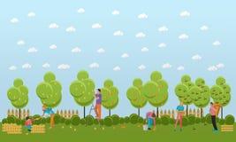 Vector l'insegna dei frutti di raccolto, progettazione piana royalty illustrazione gratis