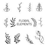 Vector l'insieme di elementi floreale, progettazione della cartolina d'auguri Elementi disegnati a mano di disegno Immagini Stock Libere da Diritti