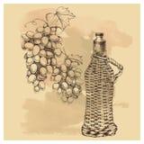 Vector l'uva di schizzo, vino per di progettazione Fotografia Stock