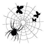 Vector la araña, las mariposas y la silueta negras del web Imagen de archivo libre de regalías
