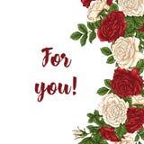 Vector la carta con bianco di giardino e le rose rosse ed i fiori del tulipano su fondo bianco Progettazione romantica per i cosm Fotografia Stock