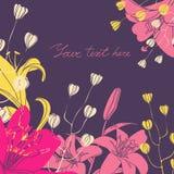 Vector la carta floreale con il posto per il vostro testo Fotografia Stock