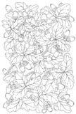 Vector la carta floreale, le retro foglie della quercia e le ghiande. Illustrazione Vettoriale