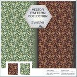 Vector la colección del modelo que incluye 2 muestras del leav Imágenes de archivo libres de regalías