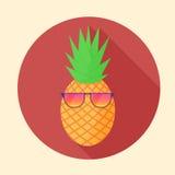Vector la fruta tropical de la piña con los vidrios del partido en el círculo Fotografía de archivo