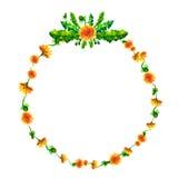 Vector la guirnalda, marco del círculo con las flores de la acuarela, fuzzies del diente de león, mano dibujada para casarse el d Foto de archivo