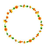 Vector la guirnalda, marco del círculo con las flores de la acuarela, fuzzies del diente de león, mano dibujada para casarse el d libre illustration