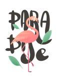 Vector la ilustración de un flamenco rosado Imágenes de archivo libres de regalías