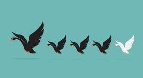 Vector la imagen de una manada del cisne en fondo azul Imagenes de archivo