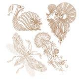 Vector la lumaca, la farfalla, la medusa, mehendy indiano degli elementi della ram Fotografia Stock Libera da Diritti